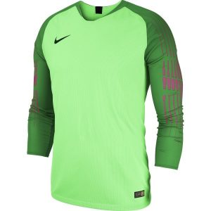Nike Gardien GK Jersey Adults